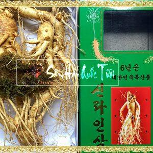 Sâm Tươi Hàn Quốc 3 Củ 1kg