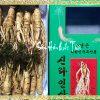 Sâm Tươi Hàn Quốc Loại ( Hầm Gà ) 20-30 Củ 1kg