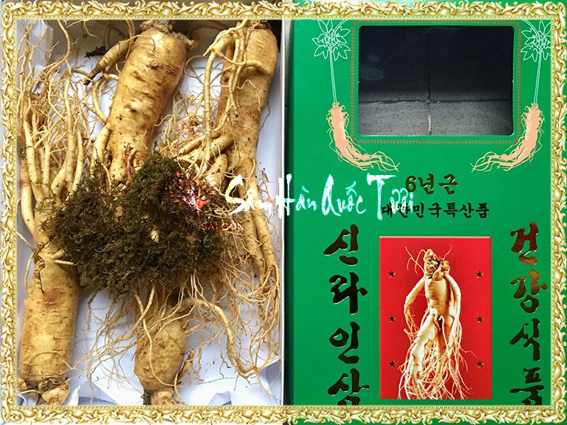 Sâm Tươi Hàn Quốc 4 Củ 1kg
