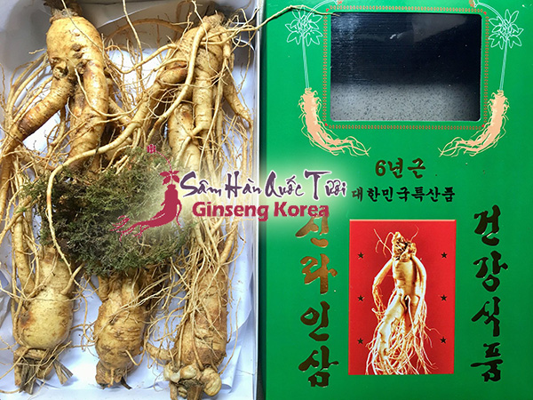 Địa chỉ mua sâm tươi Hàn Quốc TP HCM chính hãng giá tốt! ở đâu ?