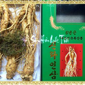 Sâm Tươi Hàn Quốc 5 Củ 1kg