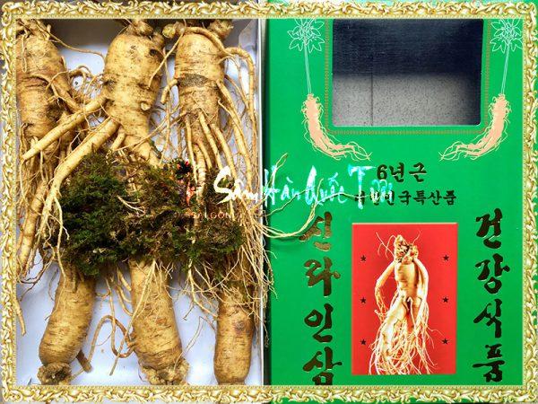 Sâm Tươi Hàn Quốc 6 Củ 1kg
