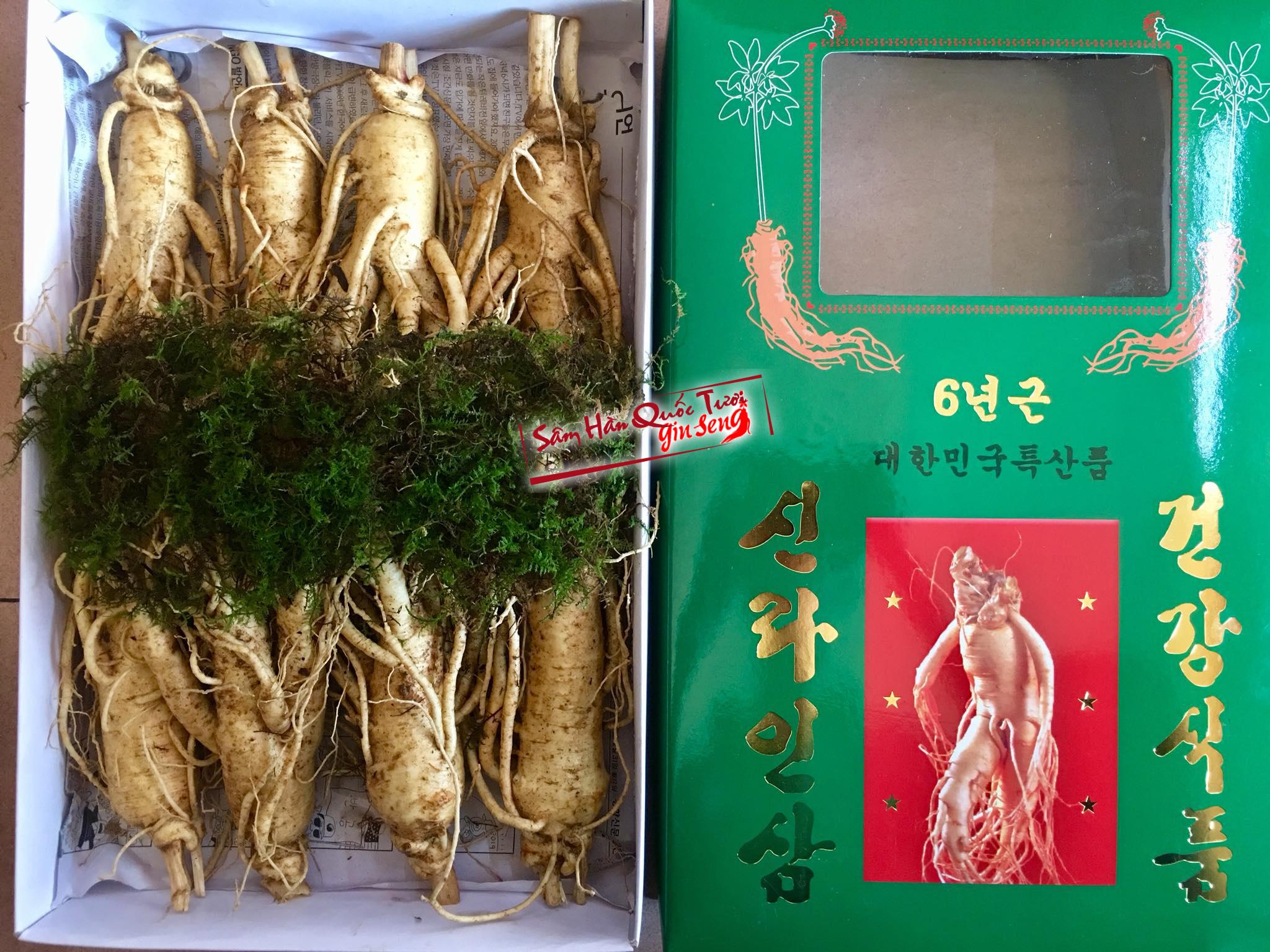 Sâm Tươi Hàn Quốc 8 Củ 1kg