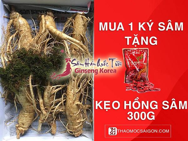 Mua 1kg Sâm Tươi Hàn Quốc - Tặng Kẹo Hồng Sâm 300g
