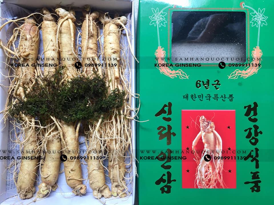Sâm Tươi Hàn Quốc 10 Củ 1kg Freeship tặng kẹo hồng sâm 300g